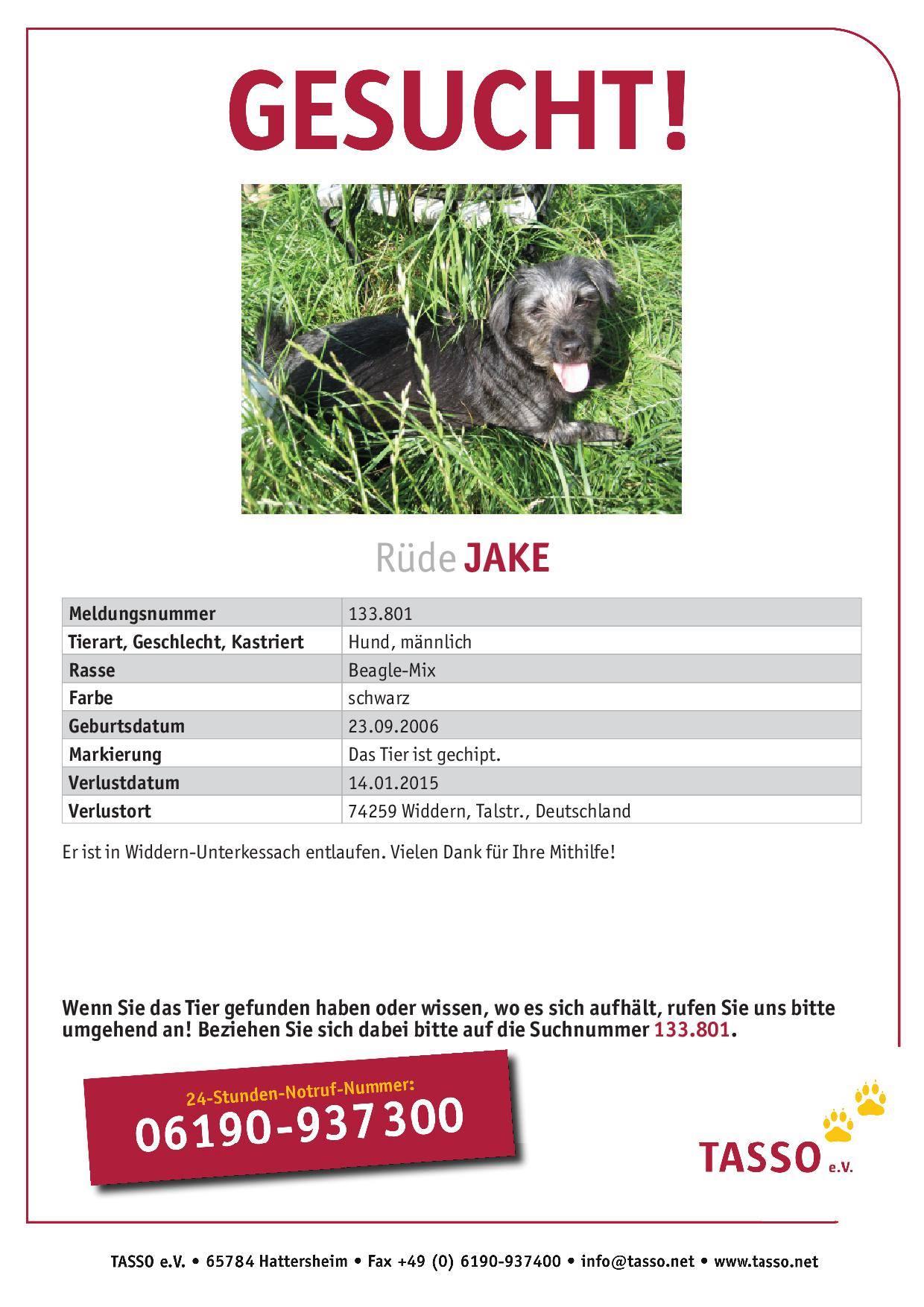 Beagle-Mix Jake in Widdern vermisst
