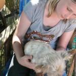 Hundeschmusen mit den Tierschutzkids25.4.15